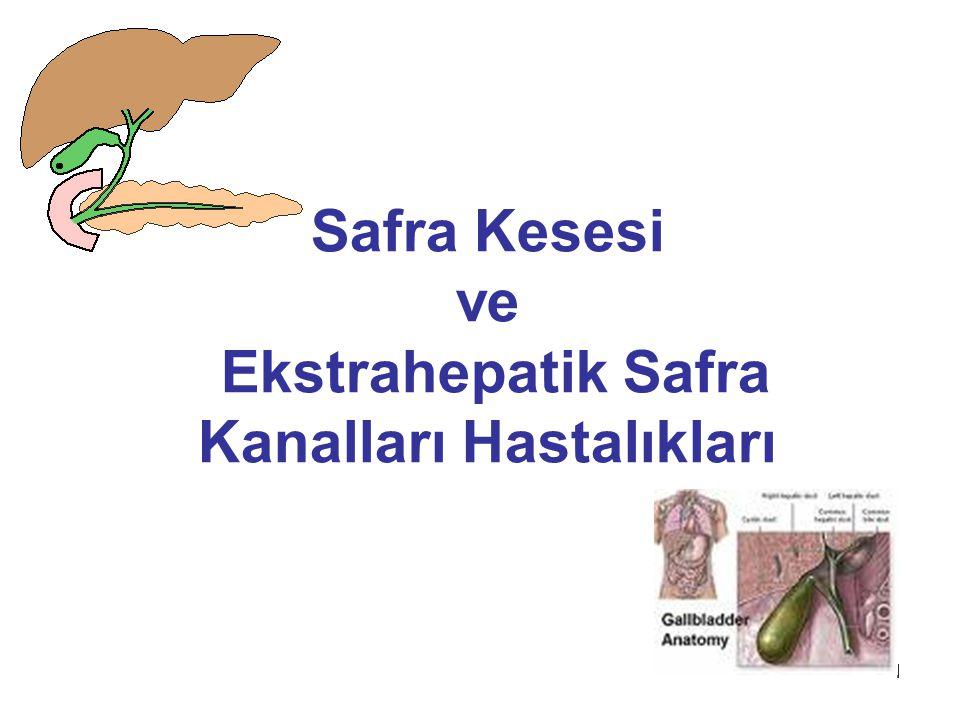 1 Safra Kesesi ve Ekstrahepatik Safra Kanalları Hastalıkları