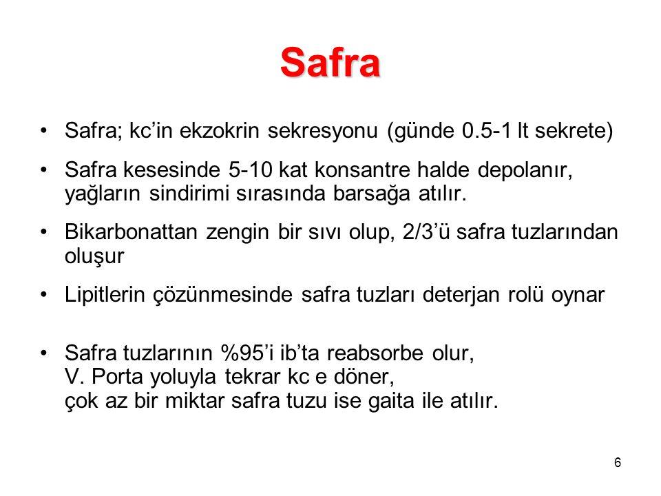 6 Safra Safra; kc'in ekzokrin sekresyonu (günde 0.5-1 lt sekrete) Safra kesesinde 5-10 kat konsantre halde depolanır, yağların sindirimi sırasında bar