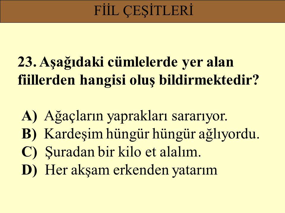 FİİL ÇEŞİTLERİ 23. Aşağıdaki cümlelerde yer alan fiillerden hangisi oluş bildirmektedir? A) Ağaçların yaprakları sararıyor. B) Kardeşim hüngür hüngür