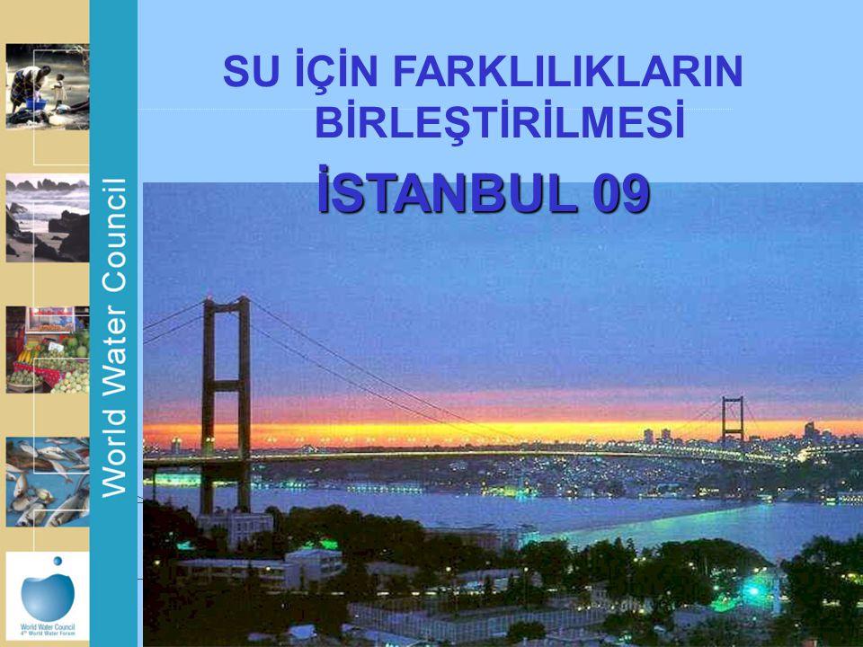 SU İÇİN FARKLILIKLARIN BİRLEŞTİRİLMESİ İSTANBUL 09