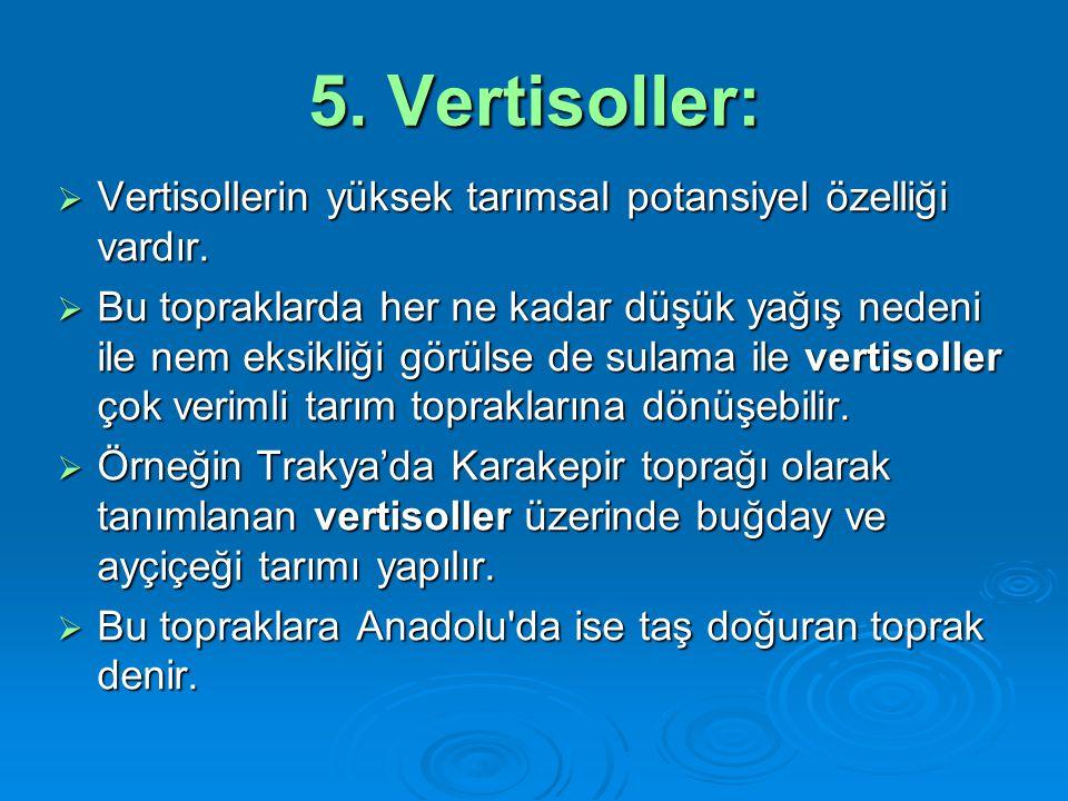 5. Vertisoller:  Vertisollerin yüksek tarımsal potansiyel özelliği vardır.  Bu topraklarda her ne kadar düşük yağış nedeni ile nem eksikliği görülse