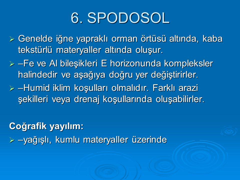 6. SPODOSOL  Genelde iğne yapraklı orman örtüsü altında, kaba tekstürlü materyaller altında oluşur.  –Fe ve Al bileşikleri E horizonunda kompleksler