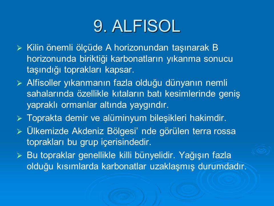 9. ALFISOL   Kilin önemli ölçüde A horizonundan taşınarak B horizonunda biriktiği karbonatların yıkanma sonucu taşındığı toprakları kapsar.   Alfi