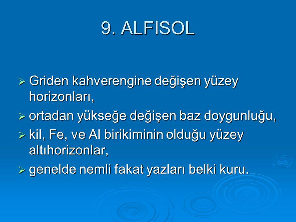 9. ALFISOL  Griden kahverengine değişen yüzey horizonları,  ortadan yükseğe değişen baz doygunluğu,  kil, Fe, ve Al birikiminin olduğu yüzey altıho