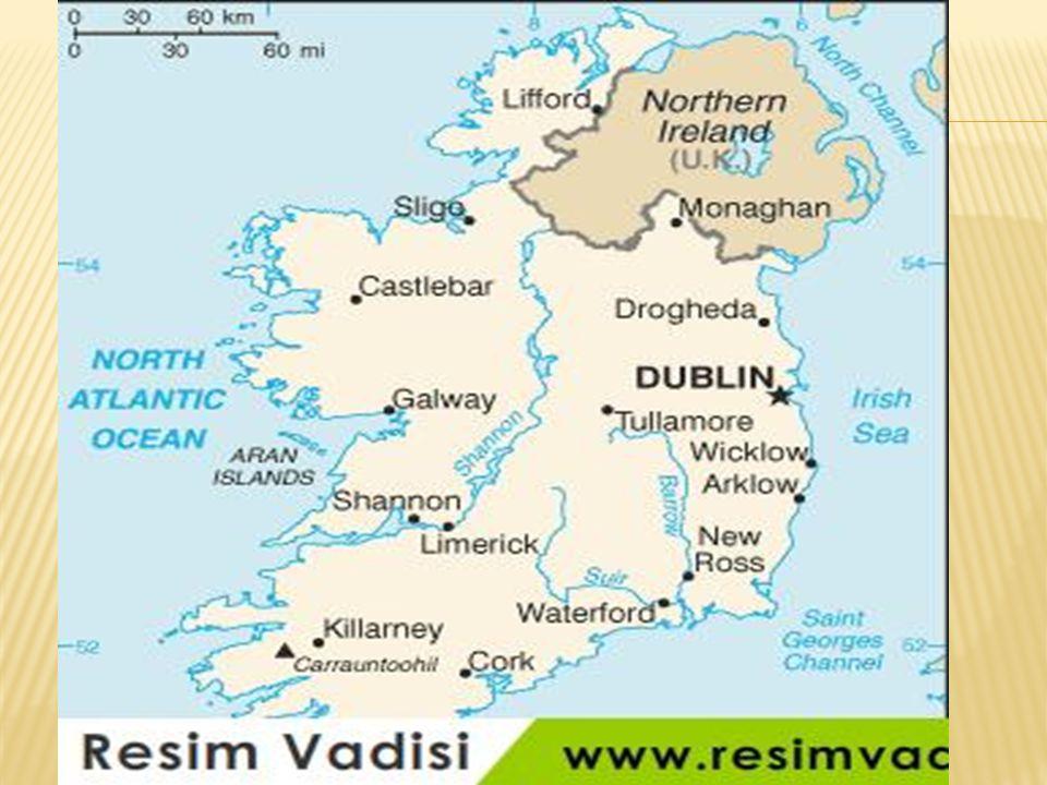  İrlanda'da yedi tane üniversite vardır.