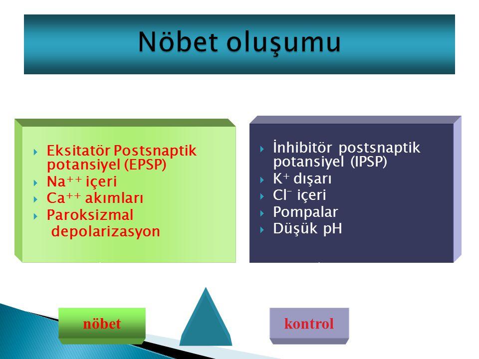  Eksitatör Postsnaptik potansiyel (EPSP)  Na ++ içeri  Ca ++ akımları  Paroksizmal depolarizasyon  İnhibitör postsnaptik potansiyel (IPSP)  K + dışarı  Cl _ içeri  Pompalar  Düşük pH nöbetkontrol