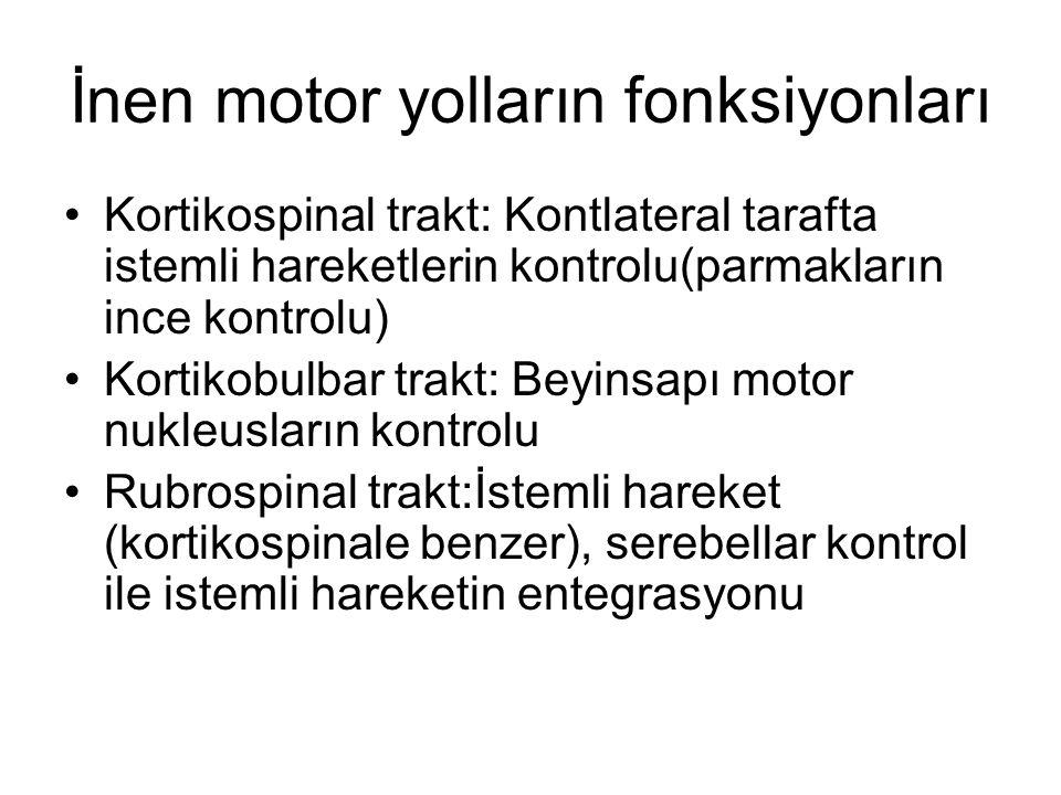 İnen motor yolların fonksiyonları Kortikospinal trakt: Kontlateral tarafta istemli hareketlerin kontrolu(parmakların ince kontrolu) Kortikobulbar trakt: Beyinsapı motor nukleusların kontrolu Rubrospinal trakt:İstemli hareket (kortikospinale benzer), serebellar kontrol ile istemli hareketin entegrasyonu