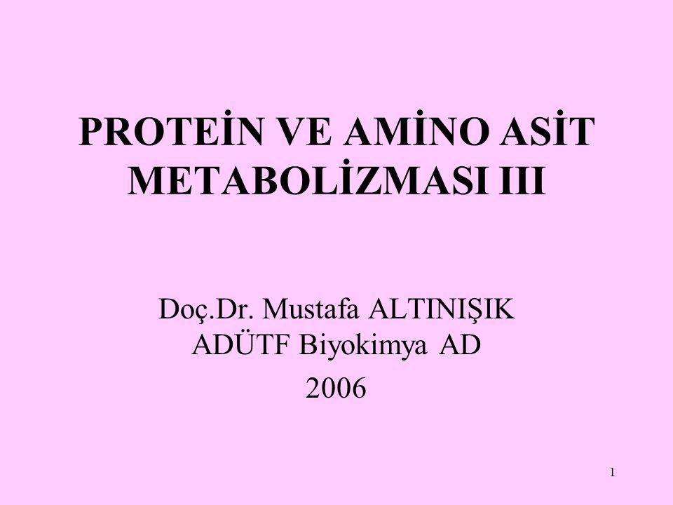 1 PROTEİN VE AMİNO ASİT METABOLİZMASI III Doç.Dr. Mustafa ALTINIŞIK ADÜTF Biyokimya AD 2006