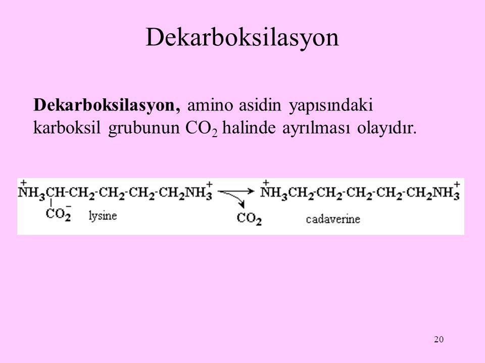 20 Dekarboksilasyon Dekarboksilasyon, amino asidin yapısındaki karboksil grubunun CO 2 halinde ayrılması olayıdır.