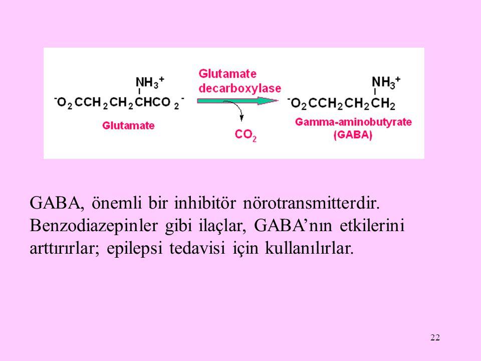 22 GABA, önemli bir inhibitör nörotransmitterdir. Benzodiazepinler gibi ilaçlar, GABA'nın etkilerini arttırırlar; epilepsi tedavisi için kullanılırlar