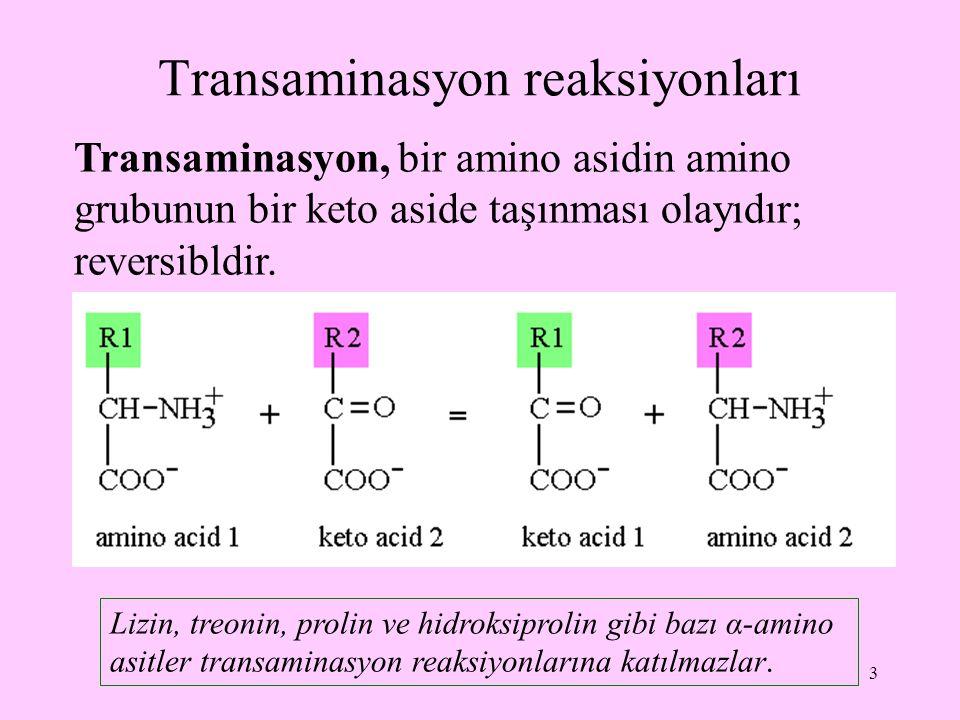 3 Transaminasyon reaksiyonları Transaminasyon, bir amino asidin amino grubunun bir keto aside taşınması olayıdır; reversibldir. Lizin, treonin, prolin
