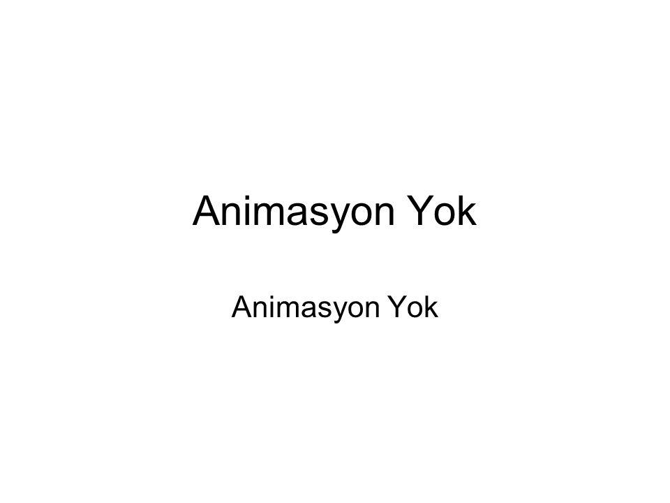 Animasyon Yok