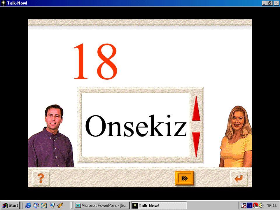 Onyedi 17