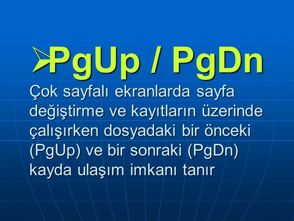  PgUp / PgDn Çok sayfalı ekranlarda sayfa değiştirme ve kayıtların üzerinde çalışırken dosyadaki bir önceki (PgUp) ve bir sonraki (PgDn) kayda ulaşım