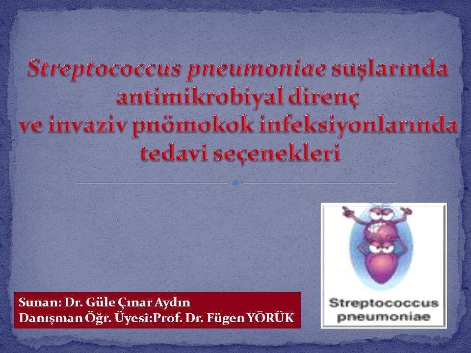 Sunan: Dr. Güle Çınar Aydın Danışman Öğr. Üyesi:Prof. Dr. Fügen YÖRÜK