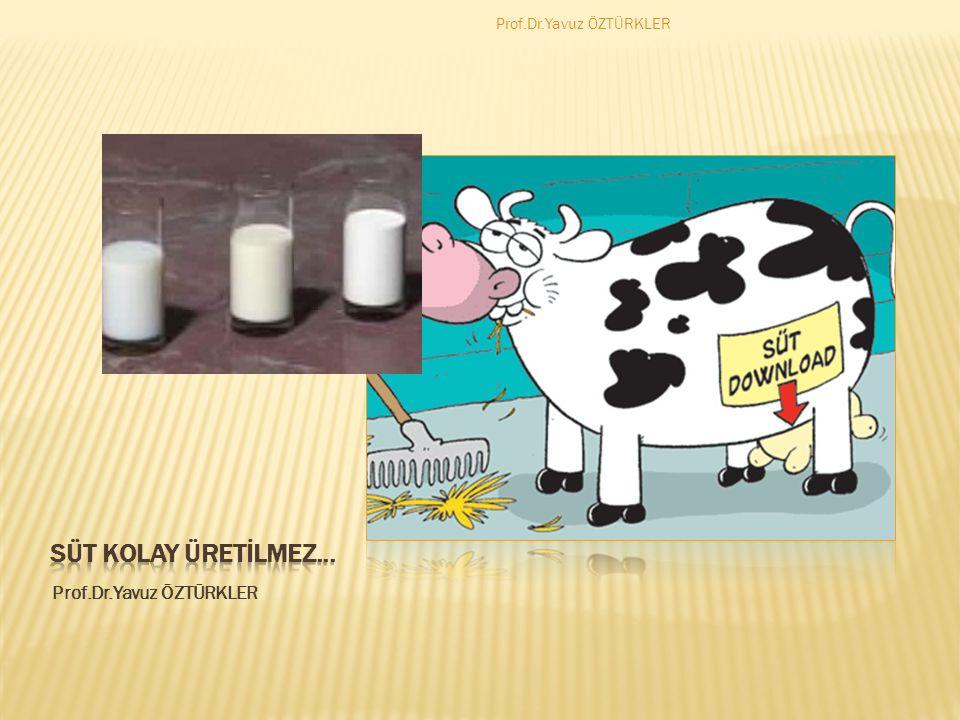  Sağlıklı ve temiz içelim  Genellikle kapalı ambalajlardaki sütleri içelim  Son kullanma tarihlerini mutlaka okuyalım  Sokakta satılan sütleri almak durumunda isek güvenli ve bildiğimiz satıcılardan alalım ve 100 derecede kaynattıktan sonra içelim Prof.Dr.Yavuz ÖZTÜRKLER