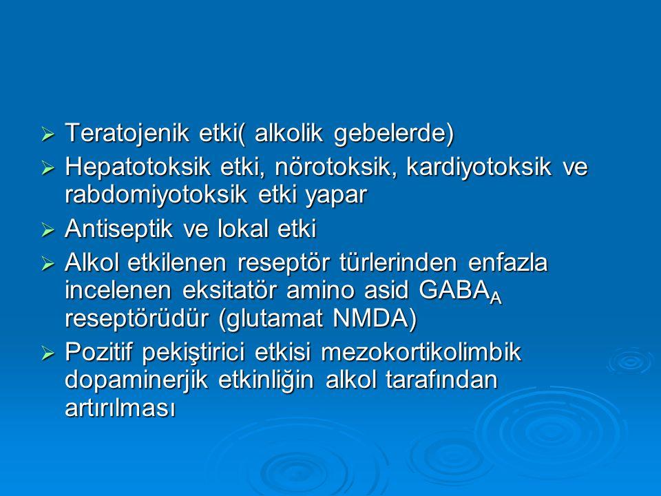 Teratojenik etki( alkolik gebelerde)  Hepatotoksik etki, nörotoksik, kardiyotoksik ve rabdomiyotoksik etki yapar  Antiseptik ve lokal etki  Alkol etkilenen reseptör türlerinden enfazla incelenen eksitatör amino asid GABA A reseptörüdür (glutamat NMDA)  Pozitif pekiştirici etkisi mezokortikolimbik dopaminerjik etkinliğin alkol tarafından artırılması