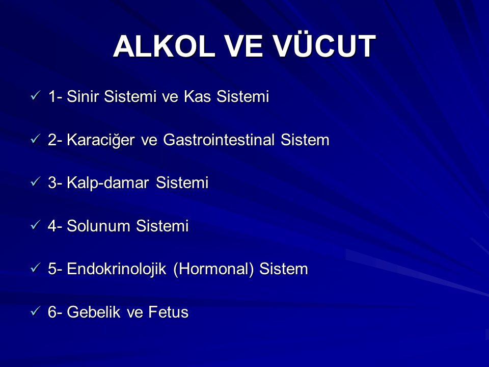 ALKOL VE VÜCUT 1- Sinir Sistemi ve Kas Sistemi 1- Sinir Sistemi ve Kas Sistemi 2- Karaciğer ve Gastrointestinal Sistem 2- Karaciğer ve Gastrointestina