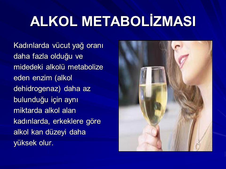 ALKOL METABOLİZMASI Kadınlarda vücut yağ oranı daha fazla olduğu ve midedeki alkolü metabolize eden enzim (alkol dehidrogenaz) daha az bulunduğu için