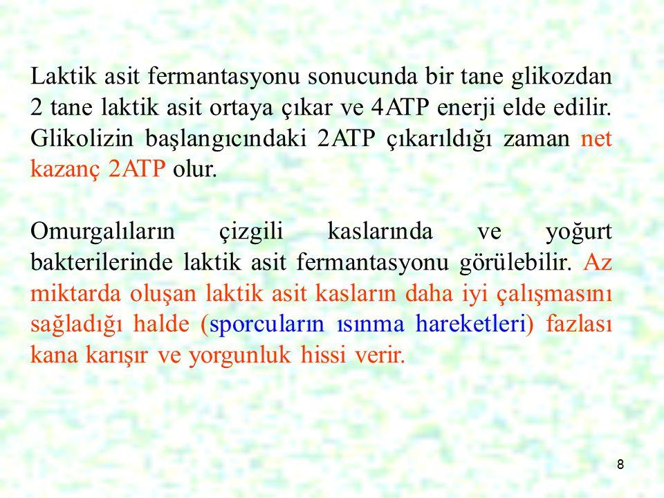 8 Laktik asit fermantasyonu sonucunda bir tane glikozdan 2 tane laktik asit ortaya çıkar ve 4ATP enerji elde edilir.