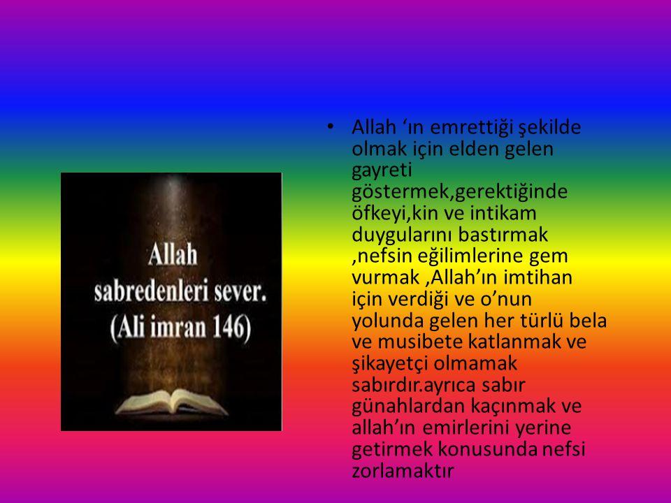 Allah 'ın emrettiği şekilde olmak için elden gelen gayreti göstermek,gerektiğinde öfkeyi,kin ve intikam duygularını bastırmak,nefsin eğilimlerine gem