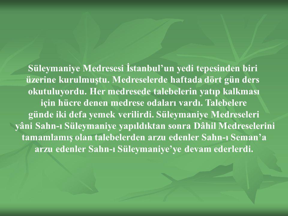 Süleymaniye Medresesi İstanbul'un yedi tepesinden biri üzerine kurulmuştu.