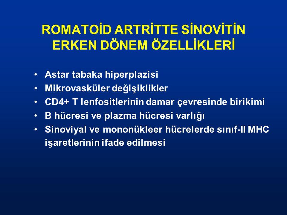 ROMATOİD ARTRİTTE SİNOVİTİN ERKEN DÖNEM ÖZELLİKLERİ Astar tabaka hiperplazisi Mikrovasküler değişiklikler CD4+ T lenfositlerinin damar çevresinde biri