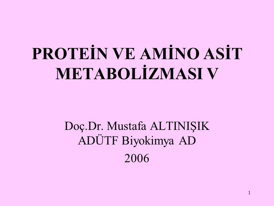 1 PROTEİN VE AMİNO ASİT METABOLİZMASI V Doç.Dr. Mustafa ALTINIŞIK ADÜTF Biyokimya AD 2006