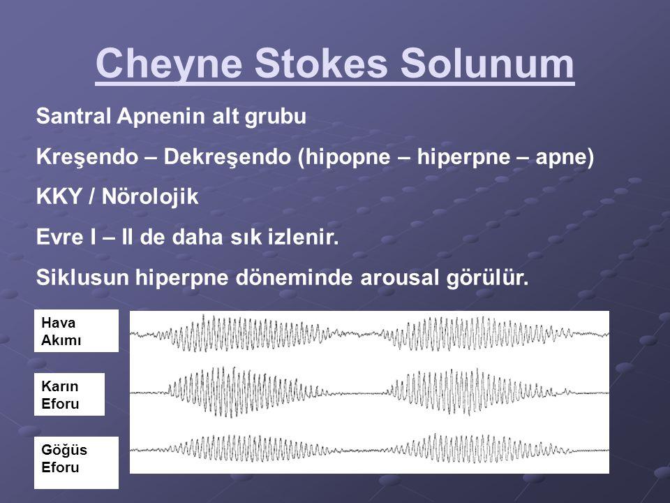 Cheyne Stokes Solunum Hava Akımı Karın Eforu Göğüs Eforu Santral Apnenin alt grubu Kreşendo – Dekreşendo (hipopne – hiperpne – apne) KKY / Nörolojik E