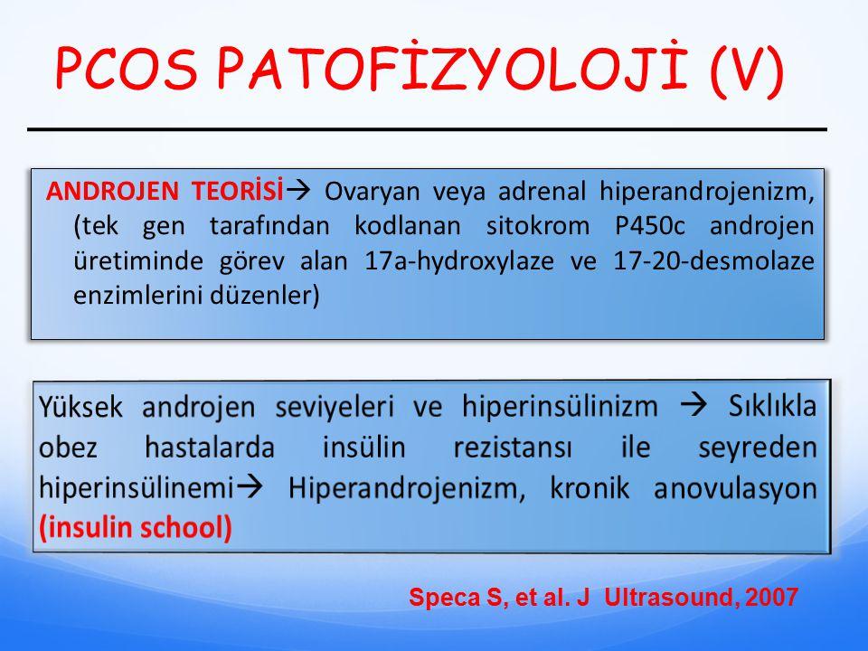PCOS PATOFİZYOLOJİ (V) ANDROJEN TEORİSİ  Ovaryan veya adrenal hiperandrojenizm, (tek gen tarafından kodlanan sitokrom P450c androjen üretiminde görev