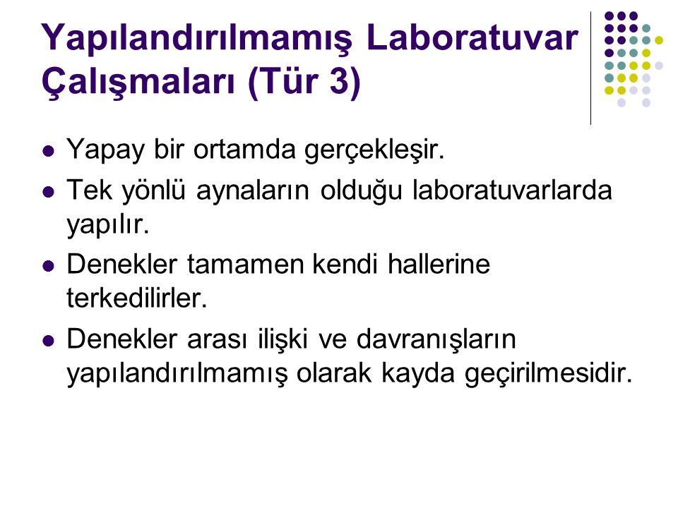 Yapılandırılmamış Laboratuvar Çalışmaları (Tür 3) Yapay bir ortamda gerçekleşir.