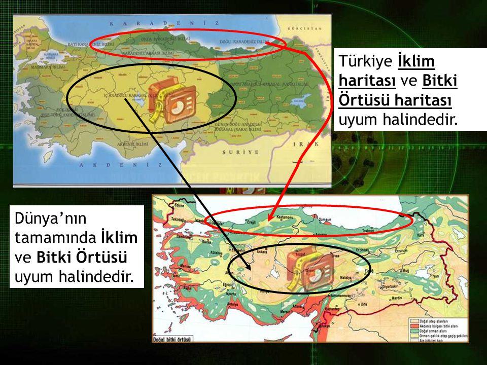 Türkiye İklim haritası ve Bitki Örtüsü haritası uyum halindedir. Dünya'nın tamamında İklim ve Bitki Örtüsü uyum halindedir.