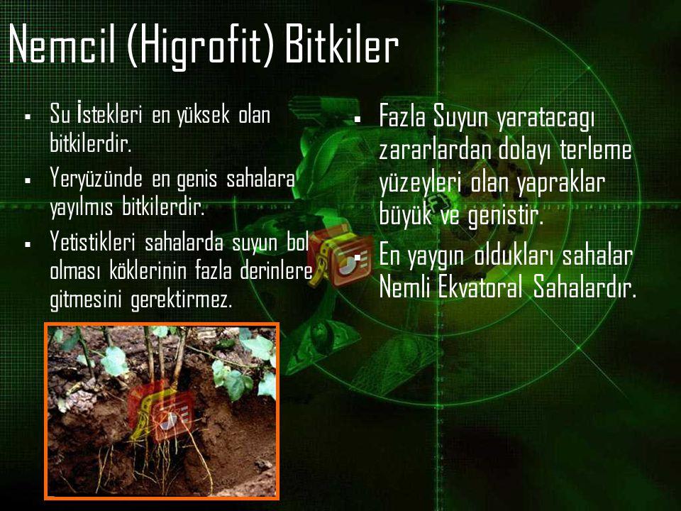 Nemcil (Higrofit) Bitkiler  Su İ stekleri en yüksek olan bitkilerdir.  Yeryüzünde en genis sahalara yayılmıs bitkilerdir.  Yetistikleri sahalarda s