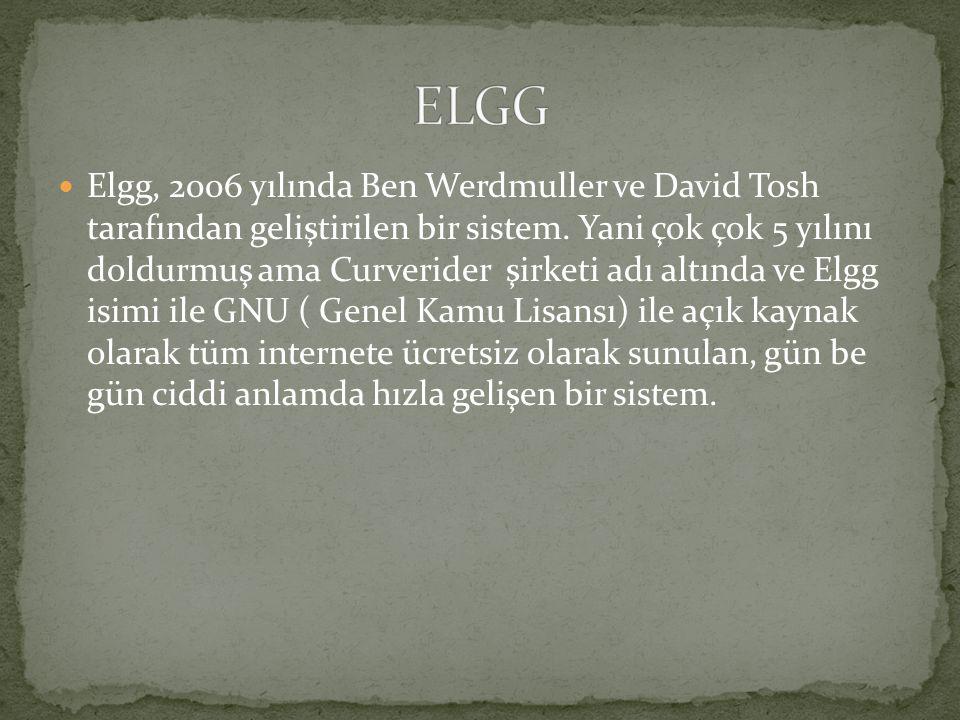 Elgg, 2006 yılında Ben Werdmuller ve David Tosh tarafından geliştirilen bir sistem. Yani çok çok 5 yılını doldurmuş ama Curverider şirketi adı altında