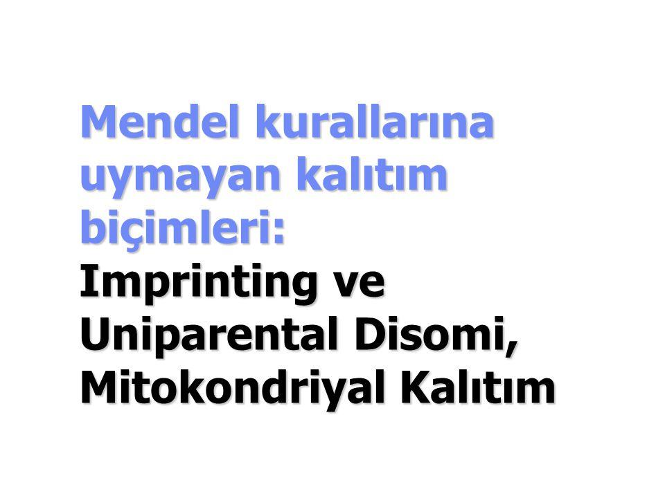 Mendel kurallarına uymayan kalıtım biçimleri: Imprinting ve Uniparental Disomi, Mitokondriyal Kalıtım