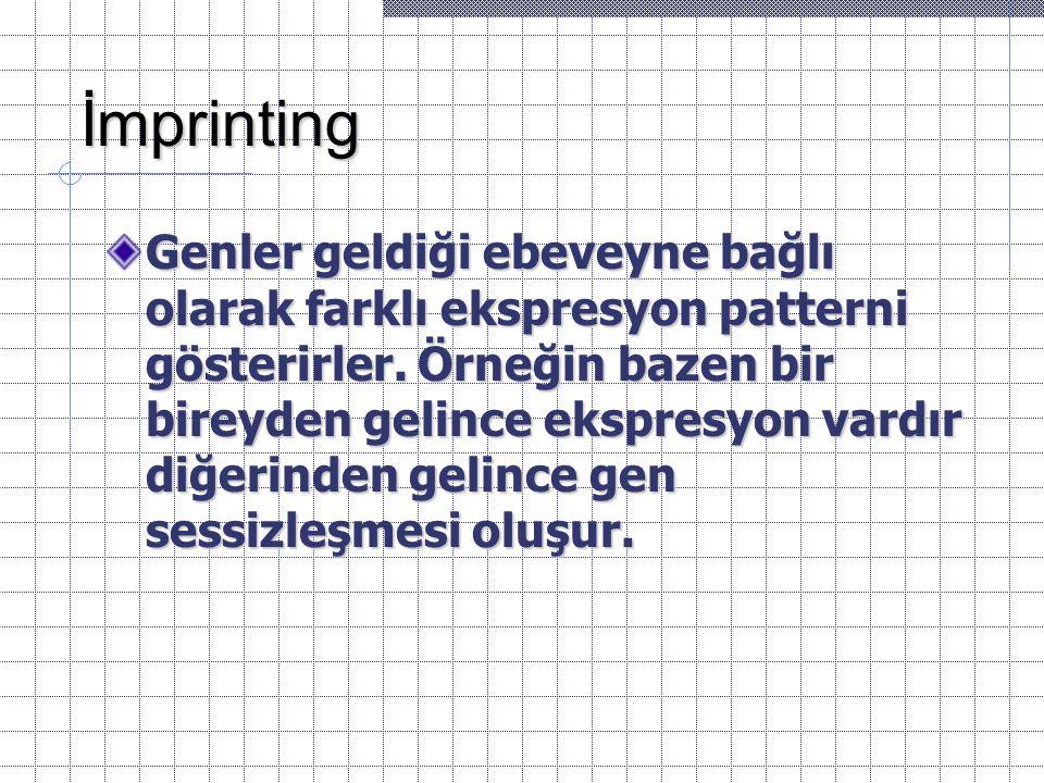 İmprinting Genler geldiği ebeveyne bağlı olarak farklı ekspresyon patterni gösterirler. Örneğin bazen bir bireyden gelince ekspresyon vardır diğerinde