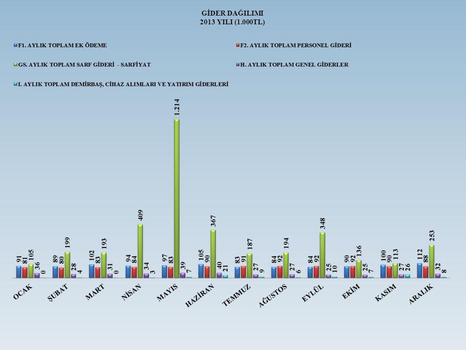 GİDER DAĞILIMI 2013 YILI (1.000TL)