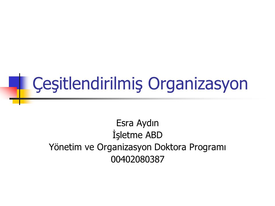Çeşitlendirilmiş Organizasyon Esra Aydın İşletme ABD Yönetim ve Organizasyon Doktora Programı 00402080387