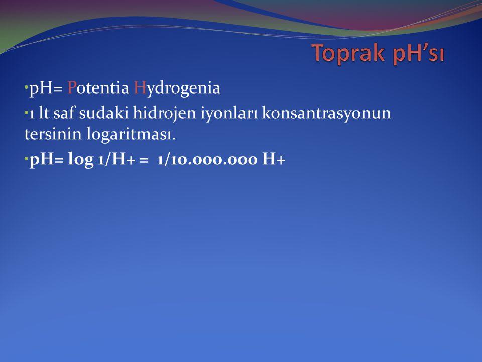 Hidrojen kaynakları: Al +3 (hidroliz) H+ Al +3 + H2O = Al (OH)3 + 3H