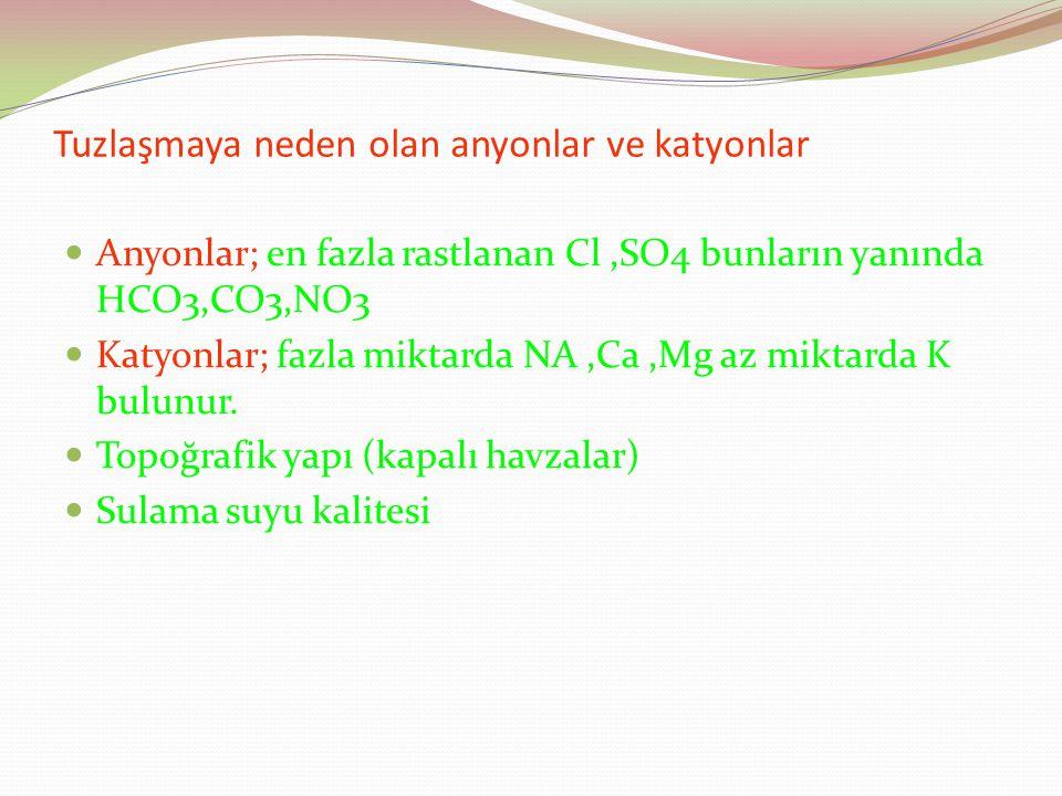 Tuzlaşmaya neden olan anyonlar ve katyonlar Anyonlar; en fazla rastlanan Cl,SO4 bunların yanında HCO3,CO3,NO3 Katyonlar; fazla miktarda NA,Ca,Mg az miktarda K bulunur.