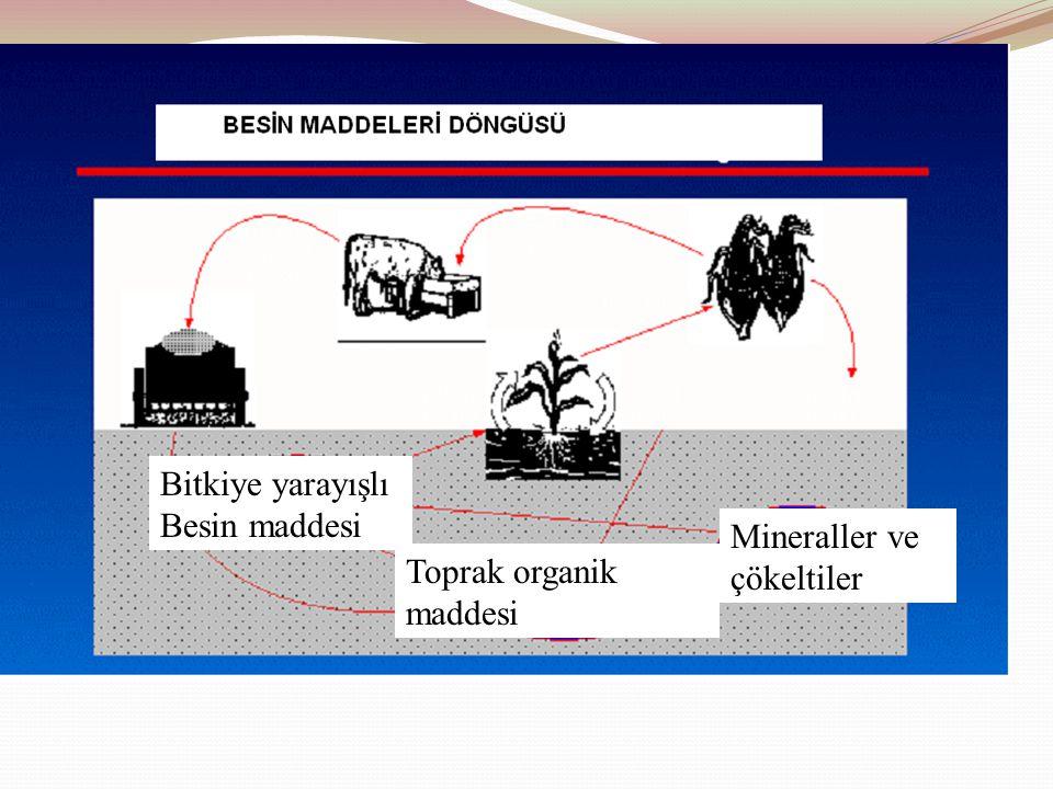 Bitkiye yarayışlı Besin maddesi Toprak organik maddesi Mineraller ve çökeltiler