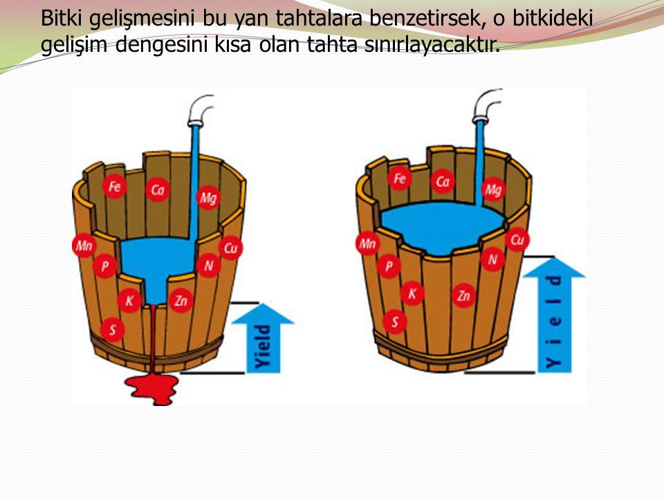 Bitki gelişmesini bu yan tahtalara benzetirsek, o bitkideki gelişim dengesini kısa olan tahta sınırlayacaktır.