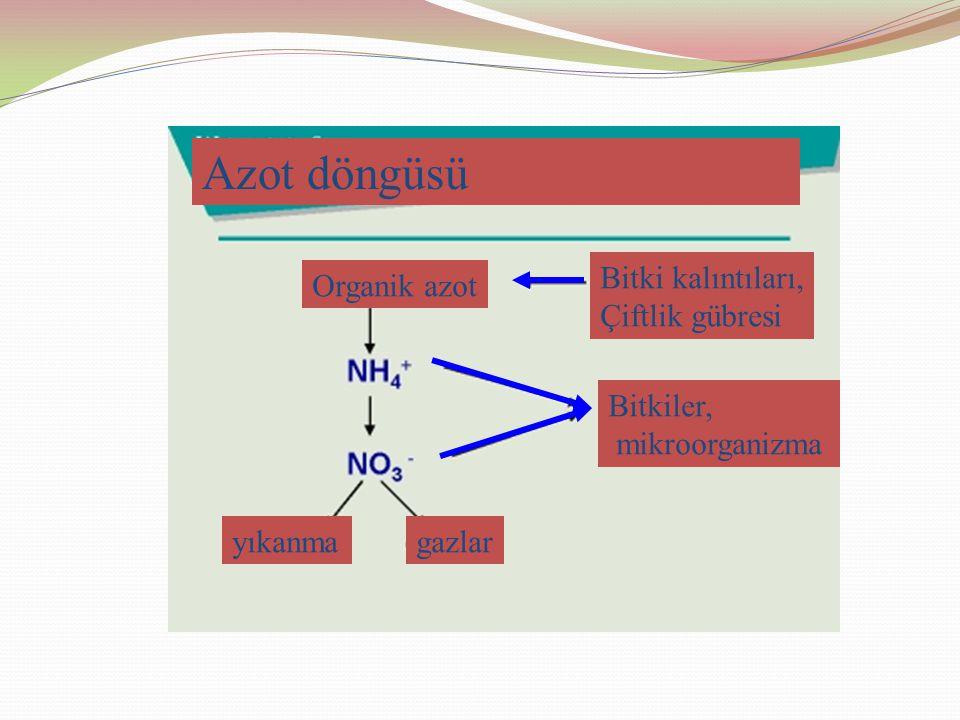 Azot döngüsü Organik azot yıkanmagazlar Bitkiler, mikroorganizma Bitki kalıntıları, Çiftlik gübresi