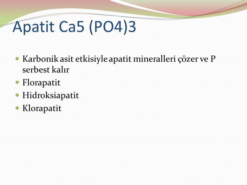 Apatit Ca5 (PO4)3 Karbonik asit etkisiyle apatit mineralleri çözer ve P serbest kalır Florapatit Hidroksiapatit Klorapatit
