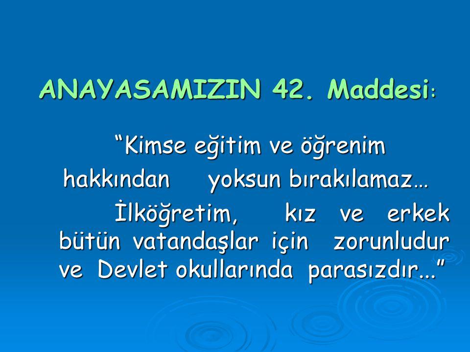 ANAYASAMIZIN 42.