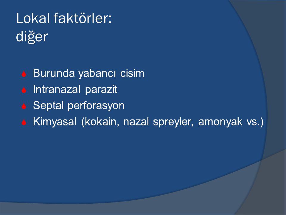 Lokal faktörler: diğer  Burunda yabancı cisim  Intranazal parazit  Septal perforasyon  Kimyasal (kokain, nazal spreyler, amonyak vs.)