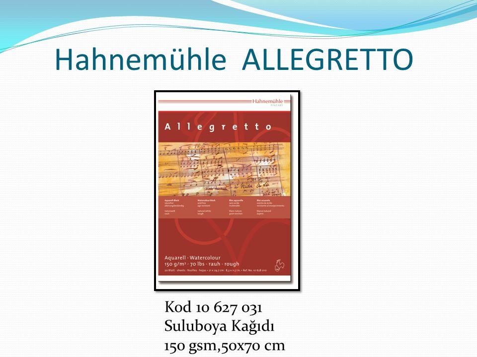 Hahnemühle ALLEGRETTO Kod 10 627 031 Suluboya Kağıdı 150 gsm,50x70 cm