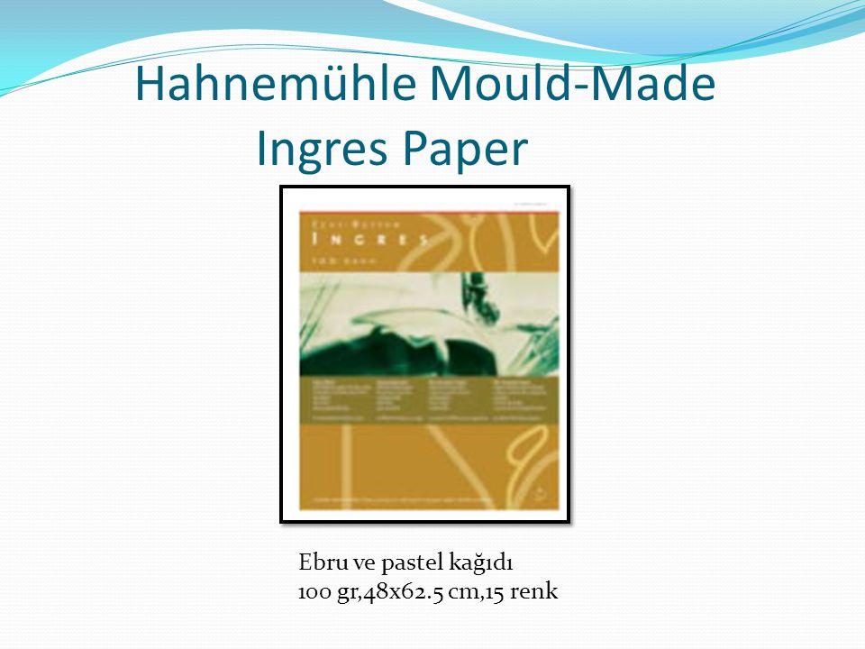Hahnemühle Mould-Made Ingres Paper Ebru ve pastel kağıdı 100 gr,48x62.5 cm,15 renk