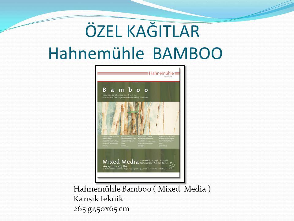 ÖZEL KAĞITLAR Hahnemühle BAMBOO Hahnemühle Bamboo ( Mixed Media ) Karışık teknik 265 gr,50x65 cm