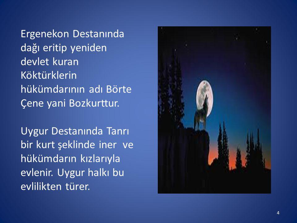 Ergenekon Destanında dağı eritip yeniden devlet kuran Köktürklerin hükümdarının adı Börte Çene yani Bozkurttur. Uygur Destanında Tanrı bir kurt şeklin